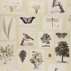 Papier peint Flora And Fauna Canvas, John Dorian
