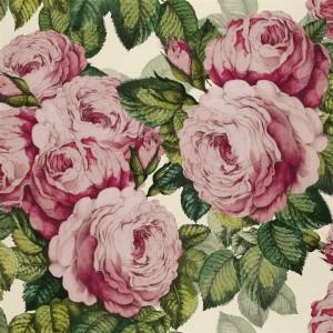 Papier peint The Rose Tuberose, John Dorian