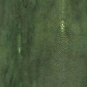 Papier peint vinyle Précieux Vert, Jean Paul Gaultier