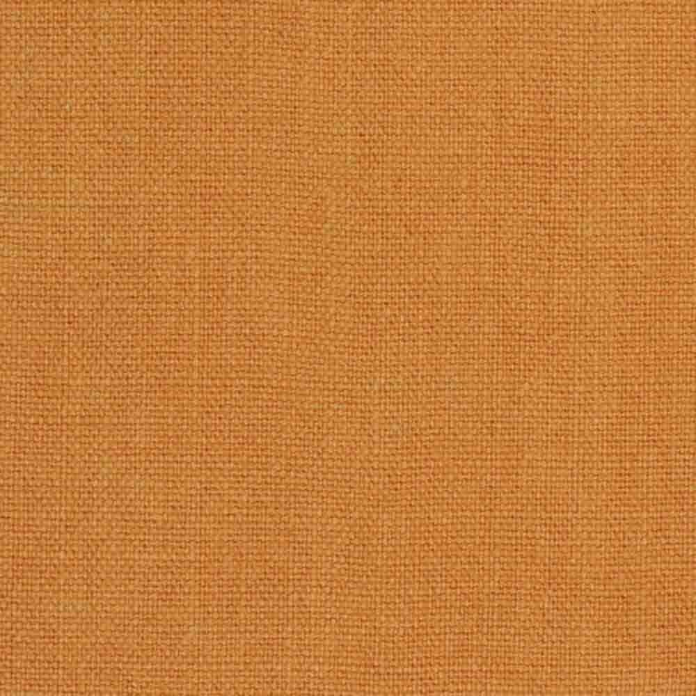 Cinnamon 28