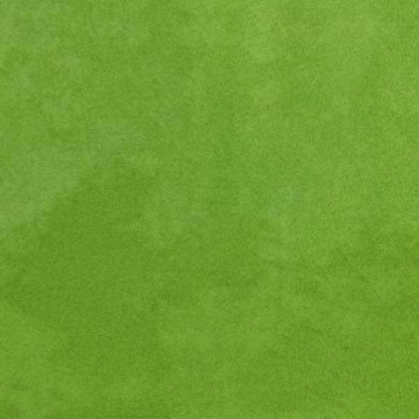 Leaf F1090/13